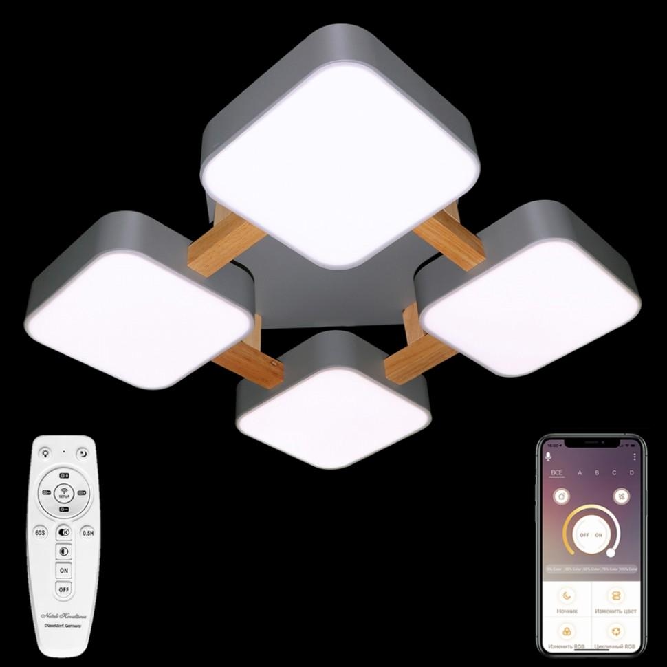 Люстра потолочная светодиодная с пультом ДУ Natali Kovaltseva LED LAMPS 81324